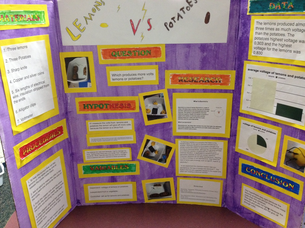 science fair project thesis